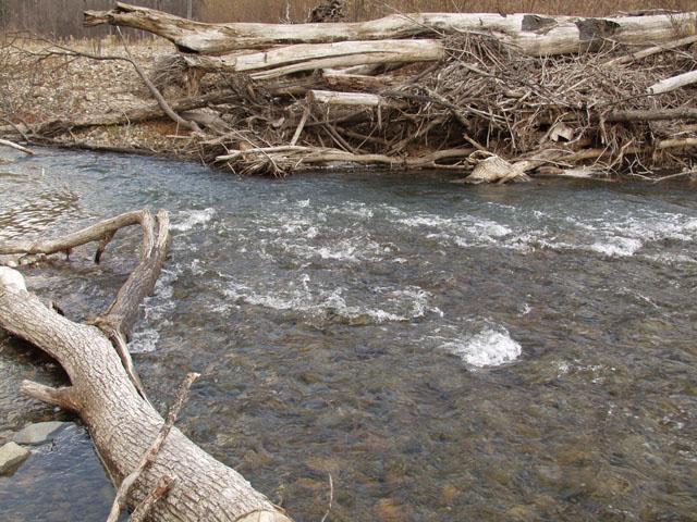 Ниже по течению, встречены были нами многочисленные рыбаки, множеством снастей фильтрующие эту почти уже дистиллированную воду.