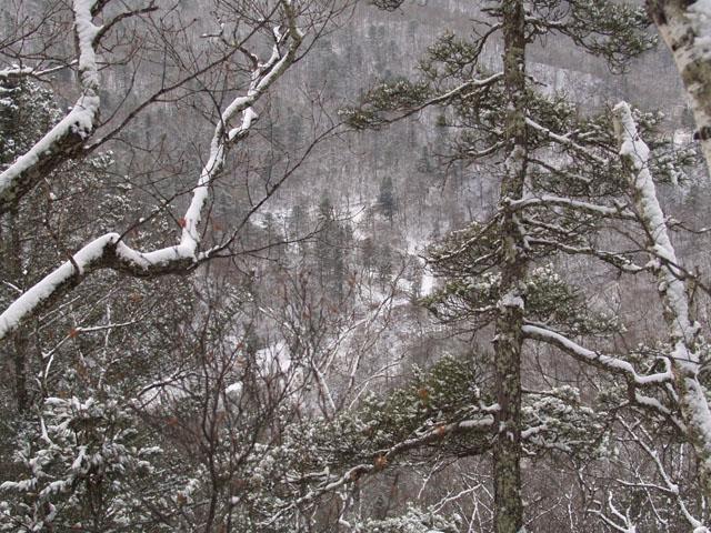Вид на ключ Полозова с одной из окрестных вершин.