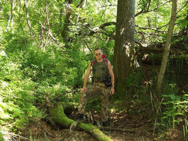 Запечатлел некоторое количество пейзажей приморского леса.