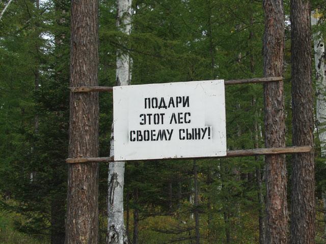 Леса уже подготовлены к грядущей приватизации. В наиболее интересных местах встречаются рекламные таблички.