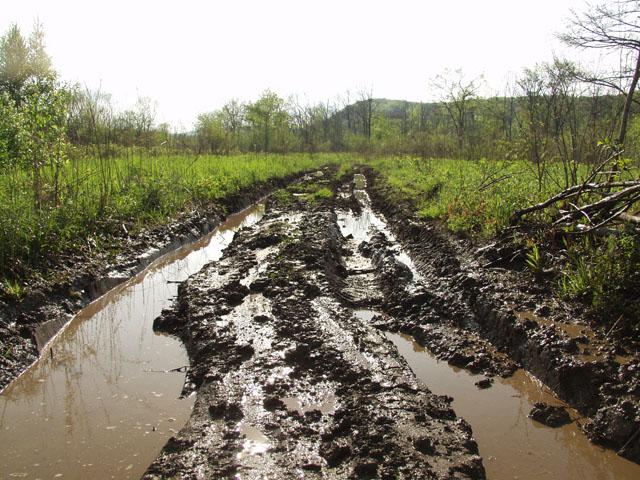 Дороги достаточно хорошие, хотя и немного отсыревшие.