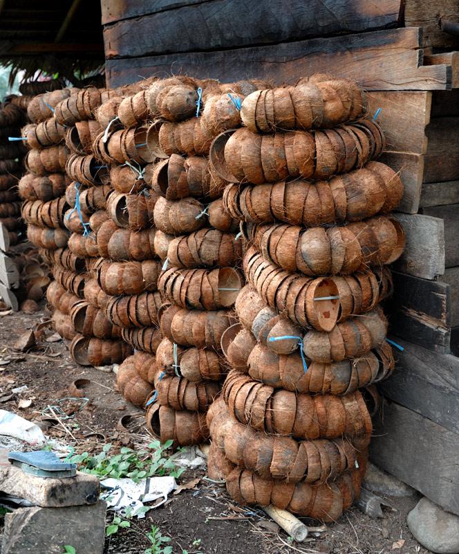 Из кокосов добывают то уголь, то масло, то копру — в зависимости от конъюнктуры рынка.