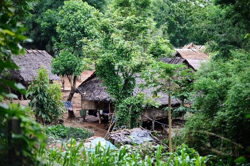 Поиск извращенной натуры решено было осуществить на некотором удалении от натоптанных туристических троп — в горах северного Таиланда. Известно, что чудеса вивисекции можно отыскать и где-нибудь поближе, но мы не ищем легких путей.