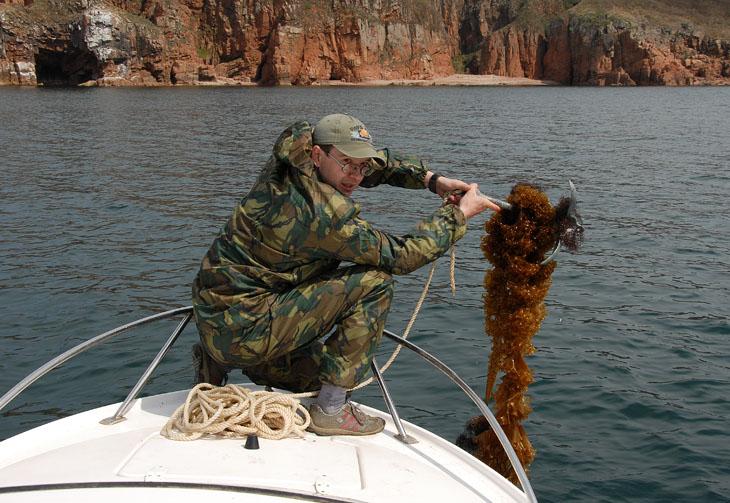 Дима превзошел всех по объему улова. Каждый подъем якоря приносил нехилый пук морской капусты и прочей подводной ботвы.