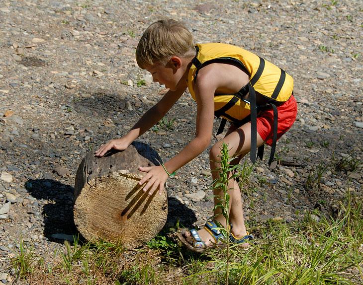 Застроил гоблинов на заготовку дров. Приятно хоть на миг почувствовать себя начальником лесоповала.