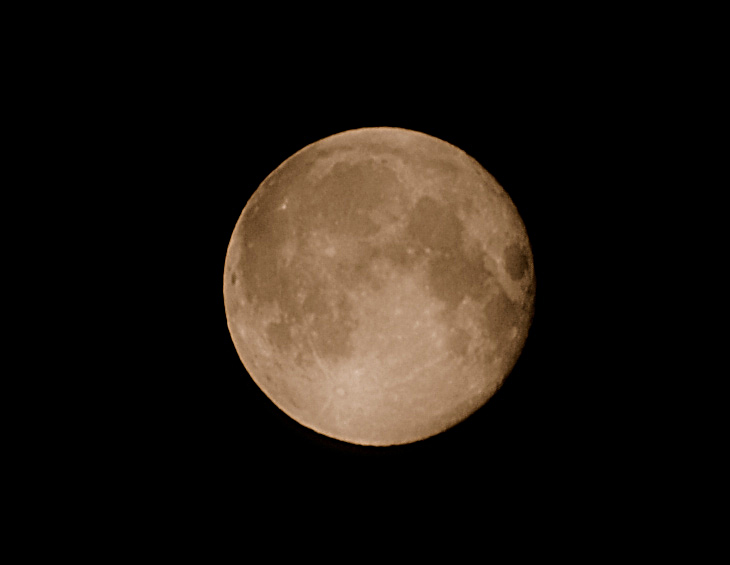 Ночью таки было полнолуние. Запечатлел копатый земной спутник. Естественно, что ловля рыб на мыша при таком светильнике занятие сомнительное.