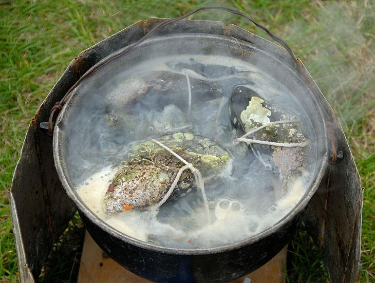 Начитавшись в сети сочных рассказов о необычайном вкусе презираемых нами мидий, решили таки попробовать сами эту рыбью наживку. Распечатали рецепт супер-пупер блюда и воплотили в готовый продукт. Суть примерно такая: открывается               крупная мидия, туда насыпается сырой рис и прочие ингредиенты, затем мидия закрывается, завязывается веревкой и варится в пресной воде. Что я вам имею сказать по этому поводу, конфетка из говна в этот раз не удалась. Да, есть вполне               можно, но мидия чудесным образом в гребешок не превратилась.