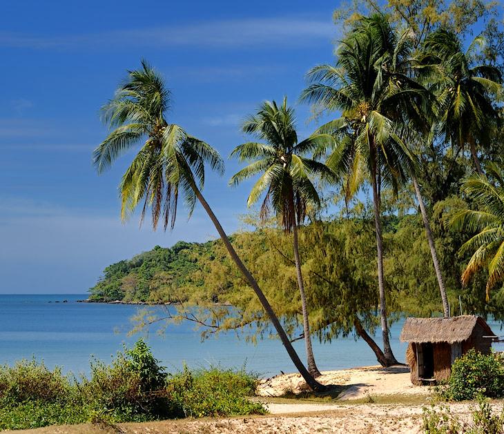 Сиануквиль - городишко на южном побережье Камбоджи, основан был в пятидесятых годах прошлого века, как новый порт у получившего тогда независимость королевства. Назван в честь незабвенного короля Сианука, после его свержения переименован в Кампонг Саом и вновь в Сиануквиль при восстановлении монархии. Славится теплым морем, многочисленными пляжами и дешевыми морепродуктами. Взяв истошно тарахтящую ржавым мотором деревянную лодку, или арендовав в пляжной харчевне веселенький пластиковый каяк, можно посетить ближние, а, запасясь терпением, и дальние от города острова. Где все те же пальмы и то же море лишний раз напомнят о впустую потраченном времени, в бестолковой суете, вдали от синей воды и белого песка.
