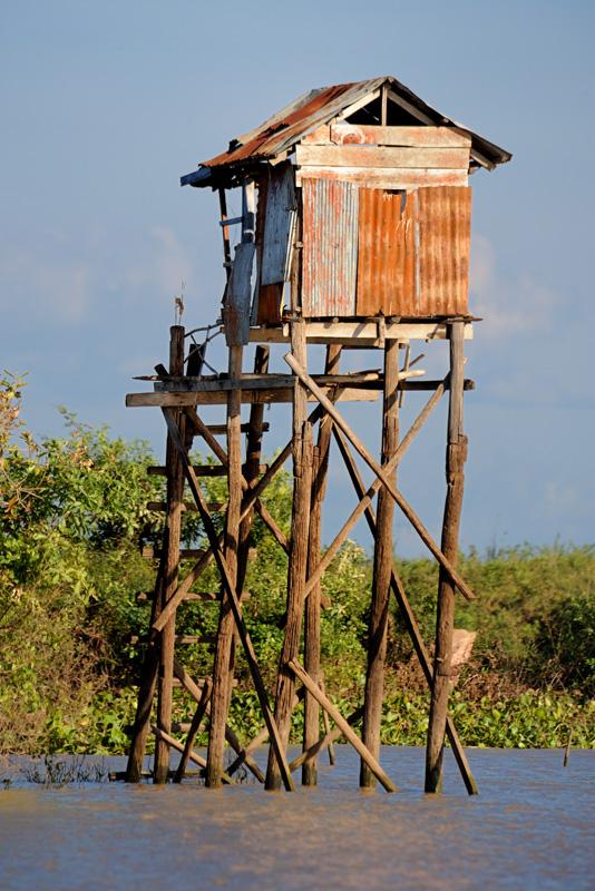 В различной литературе Тонлесап описывается как необычайно рыбное место, где тучные стада ихтиофауны издревле кормили             камбоджийцев. Но ни изобилие рыбы, ни скопления лоснящихся от белковой пищи упитанных рыбаков, ни трещащие от невиданных уловов шаланды с             карасями, мною обнаружены не были.