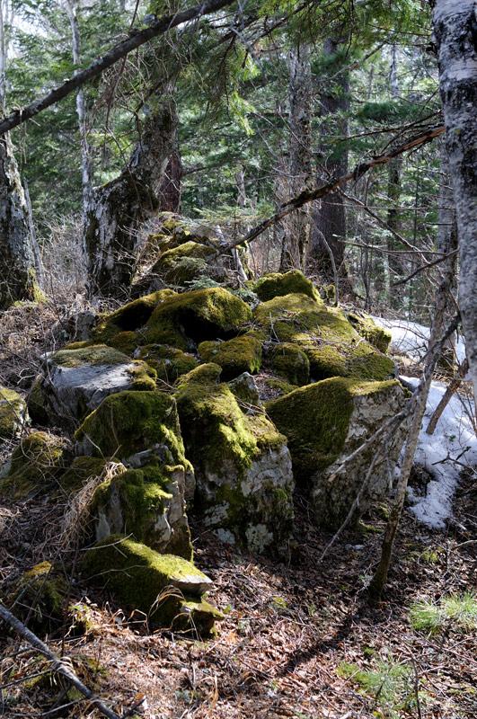 Мох на камнях сухой и плотный, можно комфортно сидеть, словно в кресле, не опасаясь отморозить место крепления ног к туловищу.